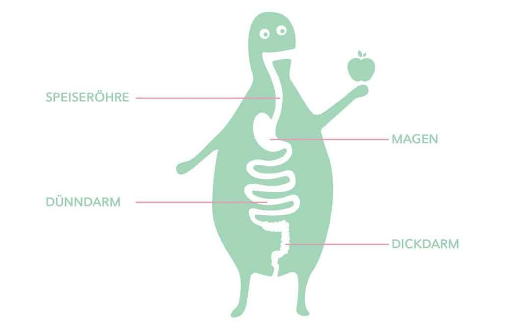 Lebensmittelallergie ist nicht gleich Lebensmittelintoleranz