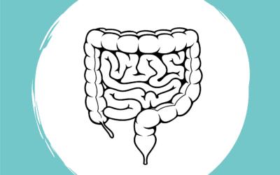 Wie das Mikrobiom mit der Entwicklung von CED und Reizdarm zusammenhängt